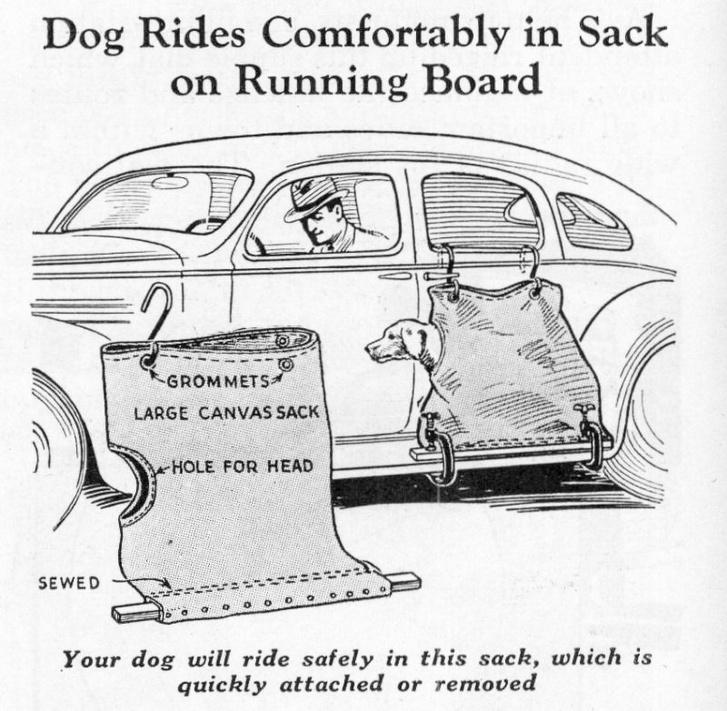 Régen is gondoltak a kutyásokra, leleményes megoldás a vászonzsákba bújtatott kutyát az ajtóra akasztva és a fellépőhöz asztalos szorítózva szállítani. Bent nem lesz kutyaszag, és az eb szájába repülő bogarakkal egy hosszabb úton a fehérjedús táplálás is meg van oldva