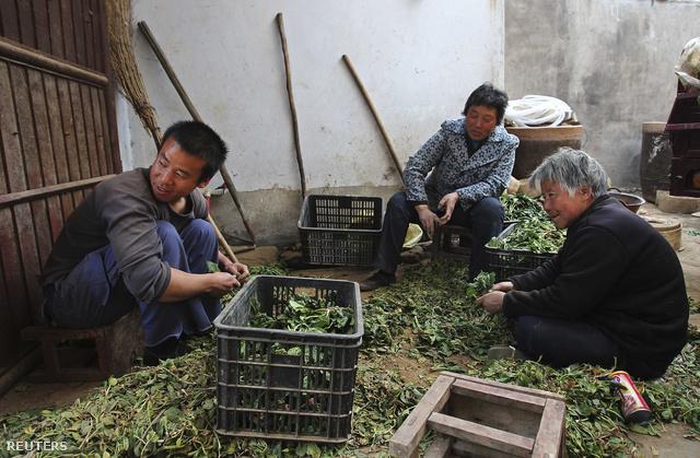 2012-04-06T085142Z 328106789 GM1E8461AYD01 RTRMADP 3 CHINA-WORKE