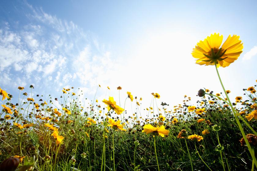 Az év eddigi legmelegebb hétvégéje jöhet: folytatódik a kánikula