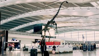 Nem kelt el Skinny, a párizsi dinoszaurusz