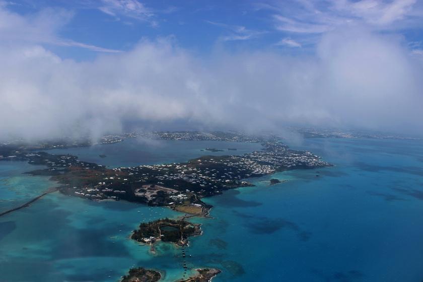 Kihaltnak hitt állatfajra bukkantak Bermuda egy eldugott szegletében