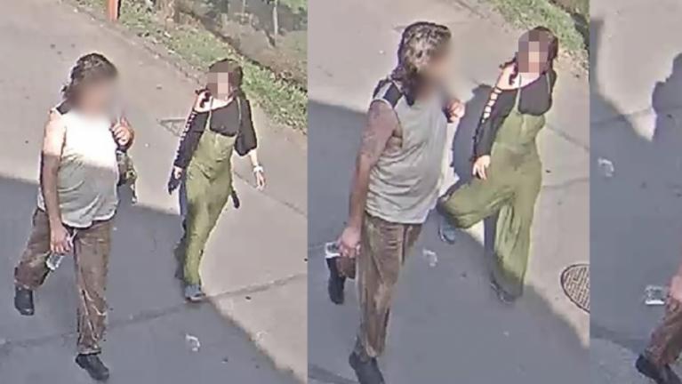 Elfogták az állatkerti teknőst megölő nőt