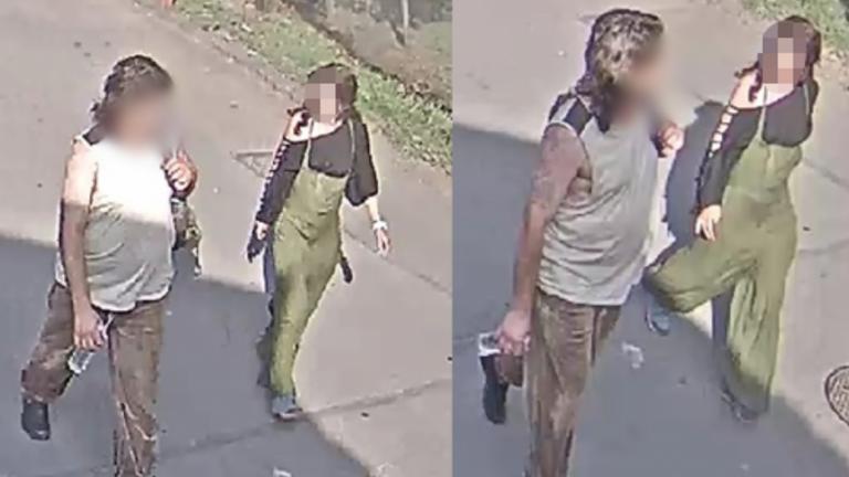 A követ is lefoglalta a rendőrség, amivel a teknőst agyonverte a nő