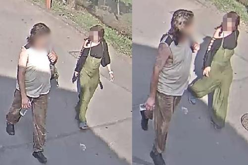 A rendőrök keresik azt a nőt, aki a Fővárosi Állat- és Növénykertben megkínzott egy görög teknőst 2019. június 13-án