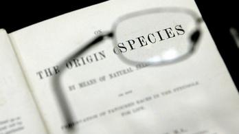 Több mint félmillió dollárért kelt el A fajok eredete