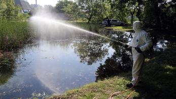 Megőrül az ország a szúnyogoktól, a katasztrófavédelem több száz hektáron permetez