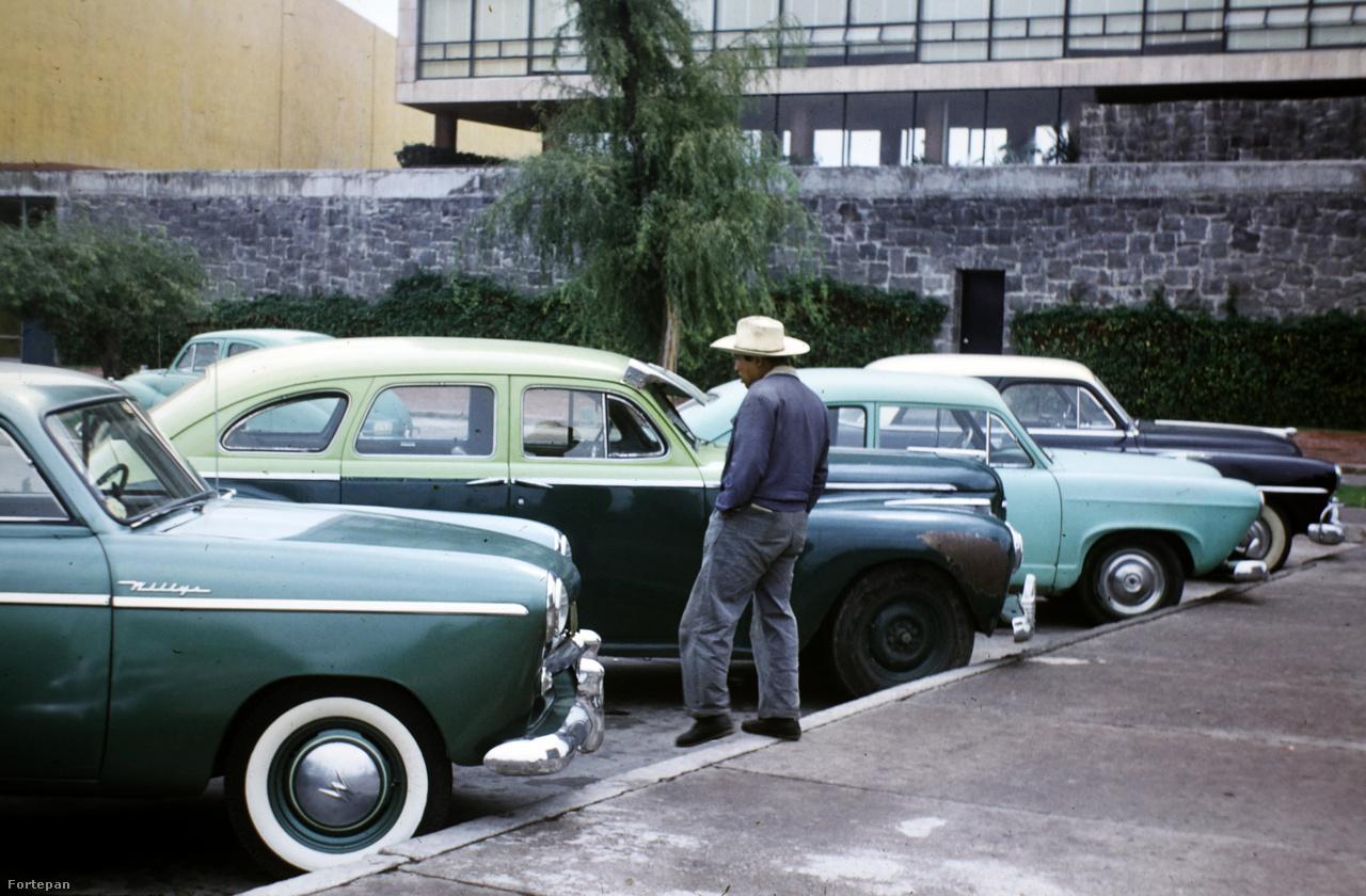Mexico City, 1950-es évekA Magyarország Orvosainak Évkönyvében 1918-as végzettsége ellenére csak 1923-tól szerepel, ekkor az orthodox izraelita hitközség által a Városmajor utcában működtetett Bíró Dániel kórház röntgenintézetét vezette. 1941-ig szinte az összes fővárosi kórházban dolgozott, például az Apponyi Poliklinikán (ma Szövetség Utcai Kórház), a Városmajor Kórházban (ma Városmajori Szív- és Érgyógyászati Klinika) és a Szent István Kórházban.