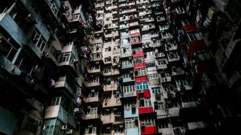 2100-ra 11 milliárdra nő a Föld lakossága