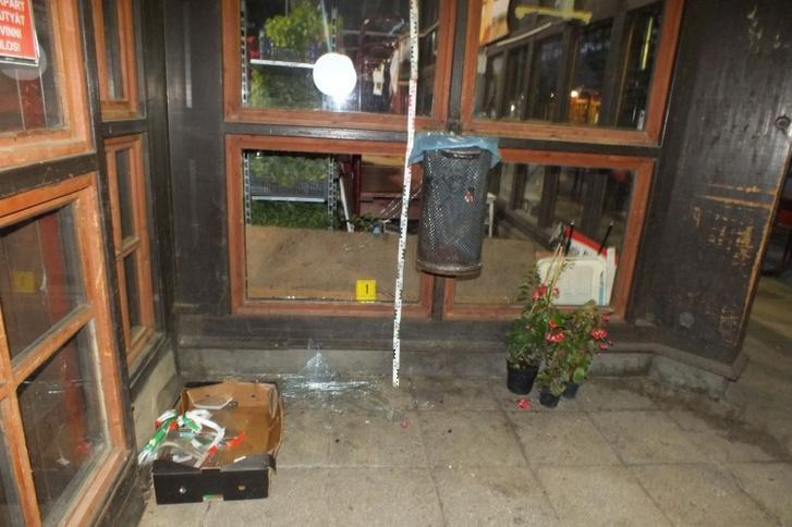 A helyszínen kiderült, hogy a férfi három cserepes növényt készített össze, feltehetőleg lopási szándékkal