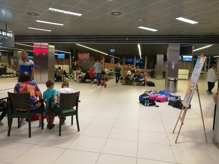 Olvasónk fotója - Élet a reptéren