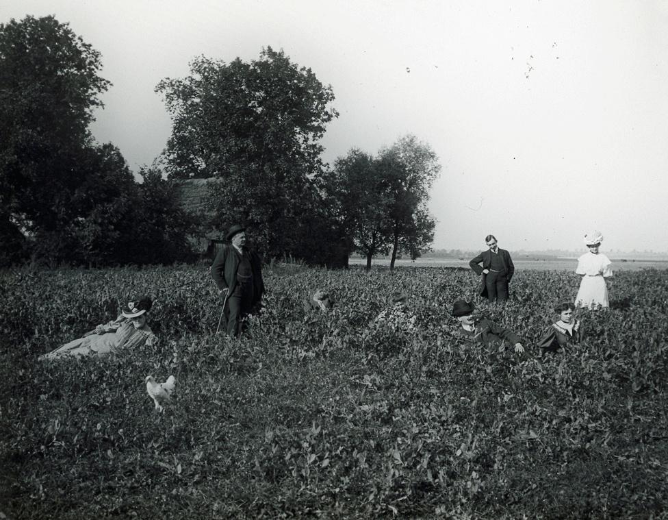 Mezei csoportkép 1906-ból