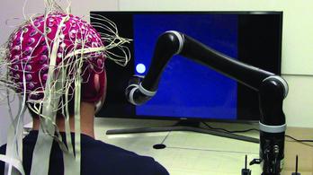 Végre jól működik egy aggyal irányított robot