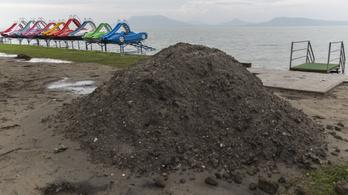Július közepéig tart majd a strandfelújítási program