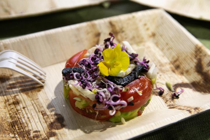 Saláta fekete fokhagymás, avokádós, pálmaszíves, paradicsomos, rambo retekcsírás salátával.