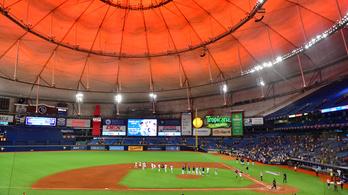 Vándormadárnak állna egy baseballcsapat, Florida és Kanada között ugrálnának