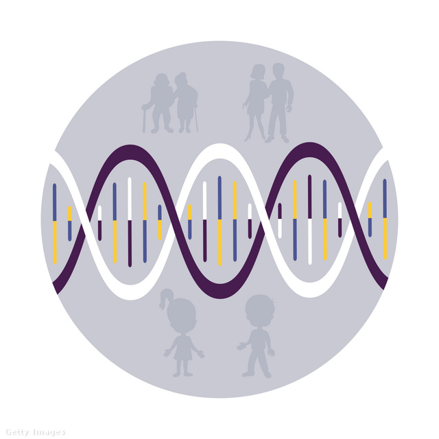 genetikai rákos hajlam)