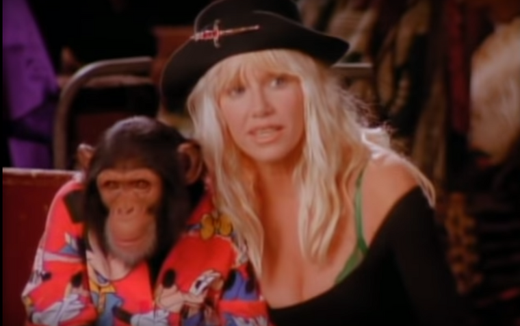 Ezen a képen két híresség van, ugyanis a csimpánz sem egy közönséges csimpánz