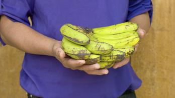 Rosszul sült el a reklám, banánért vette meg az autót