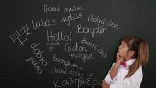 Mi kell a nyelvtudáshoz a szókincsen és a nyelvtanon kívül?