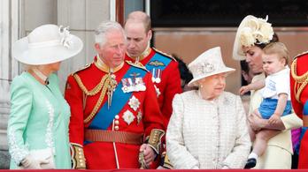A nagy környezetvédelemben a duplájára növelte a brit királyi család az utazási ökológiai lábnyomát