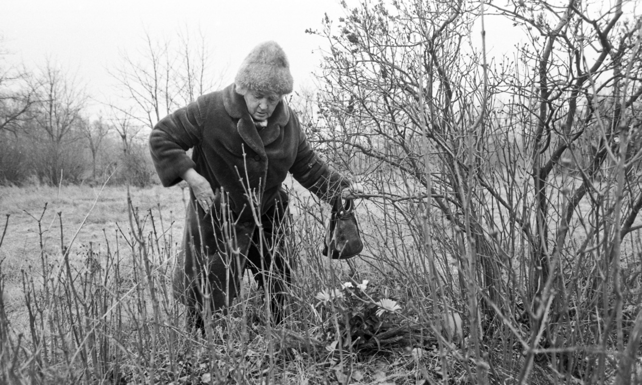 A 301-es parcella a rákoskeresztúri új köztemetőben az 1956-os forradalmat követő megtorlás sok áldozatának nyughelye, ahol jelöletlen sírban feküdtek a kivégzettek. A hozzátartozók találomra elhelyezett virágokkal és koszorúkkal emlékeztek szeretteikre.