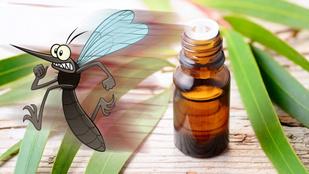 10 illóolaj, ami megvéd a szúnyogoktól