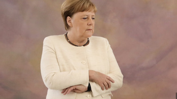 Nagyon furcsán remegett Merkel a német elnök mellett
