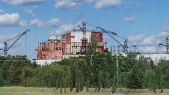 Csernobil virágzó élővilága, azaz miért nem baj, ha rákosak a fák