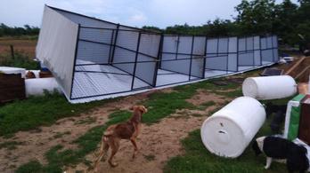 Vihar: 2 ezer tetőt bontott meg a szél, 24 ezer háztartásban nincs áram