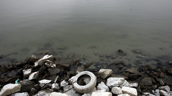 Nyugalomra int a Csatornázási Művek, nem tőlük került szennyvíz a Dunába