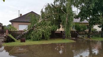 Ötezer otthonban még mindig nincs áram Szabolcsban a csütörtöki vihar óta