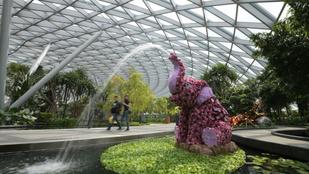 A Szingapúr-Changi repülőtér brutálisan menő kalandparkot nyitott
