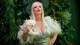 Pornósztár mentené meg Cicciolinát az anyagi csődtől