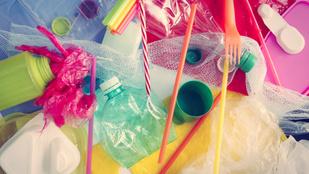 Miért épp a műanyag bolygónk egyik legnagyobb ellensége?