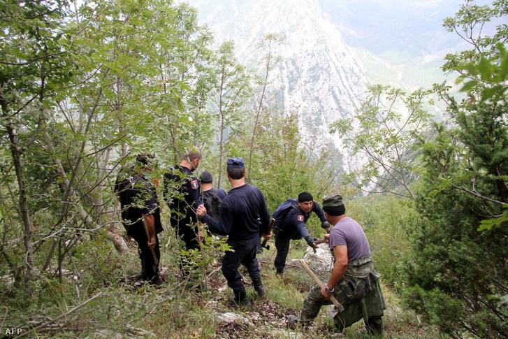 Az albán rendőri erők Kruja régióban, az Onuri-hegységben, Kelet-Albánia keleti hegyvidékén, 2016. szeptember 21-én kannabisz-növényeket kutatnak.