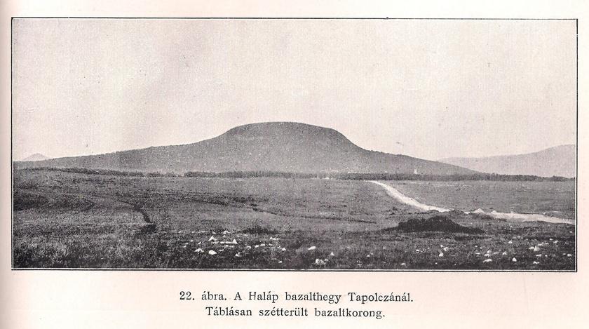 halap-hegy1