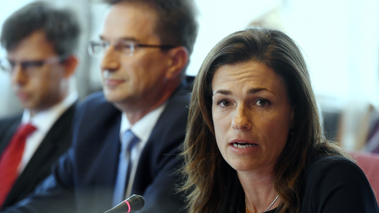 Igazságügyi miniszterhelyettes: Az egész Alaptörvényt felülvizsgáljuk