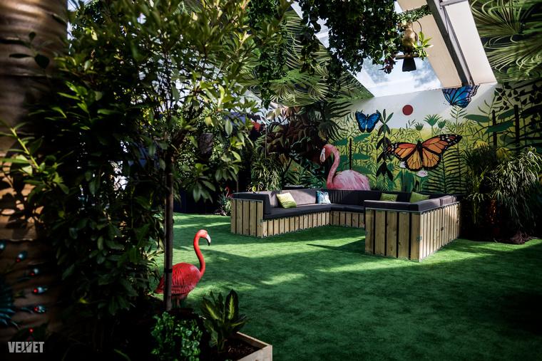 A VIP-karszalagosok már a belépéskor megtapasztalhatják, mit is jelent VIP-nek lenni, ugyanis ebben a dzsungelhangulatú részbe érkeznek,...