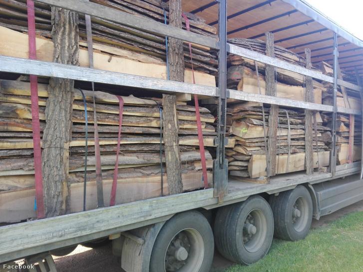 A NAV munkatársai Békés megye egyik félreeső útján, a hajnali órákban ellenőriztek egy megközelítőleg 24 tonna fát szállító román kamiont.