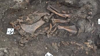 Kutyájával és lovával temették csónaksírba a vikinget