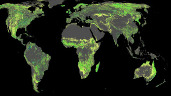 Hatékony megoldást találtak a klímaváltozás megállítására a kutatók