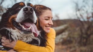 10 tipp, hogy jobb legyen a kapcsolatod a kutyáddal