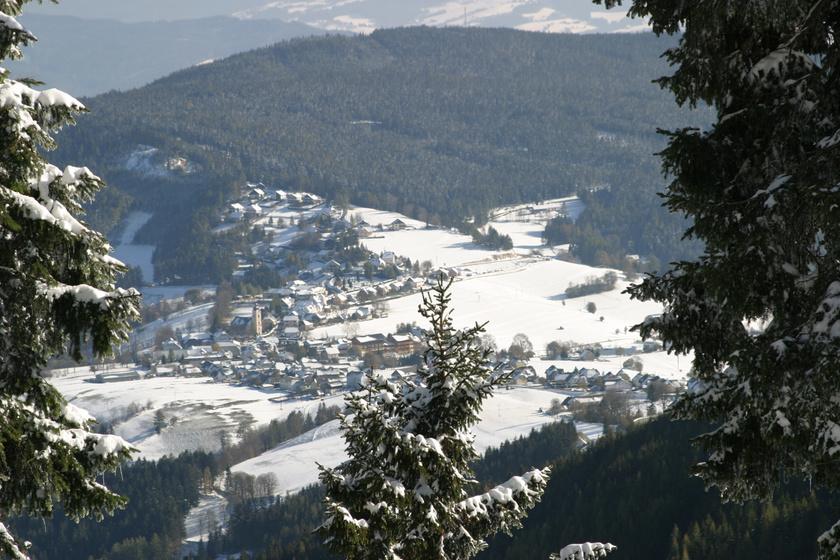 Fischbach vom Teufelstein a Weizi járásban található, nagyjából 1500 fő lakja, ám gyönyörű plébániatemplomai mellett a természet is csodálatos. A Fisbachi-Alpok és a Teufelstein hegycsúcsa is sokakat elvarázsol.