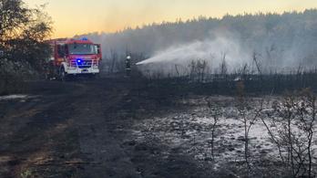 Több hektáron tombolt a tűz Kemenesmagasinál