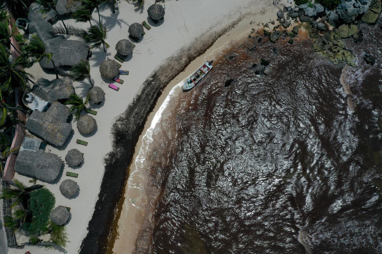 algaviragzas-tengerpart