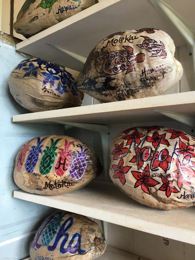 A helyi postahivatalba minden nap friss kókuszdiók érkeznek, melyeket előzőleg már megvizsgáltak, hogy alkalmasak-e arra, hogy postára adják őket