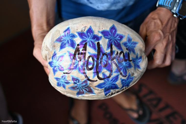 A kókuszposta létrejötte óta már több tízezer kókuszt postáztak a világ legkülönbözőbb pontjaira