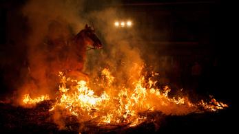 Megrémült lovat mentettek ki az égő pajtából a rendőrök