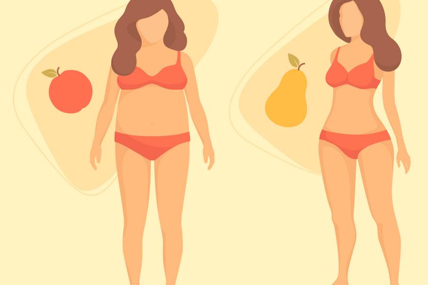 A kép bal oldalán az alma alkat, jobb oldalán pedig a körte alkat látható.