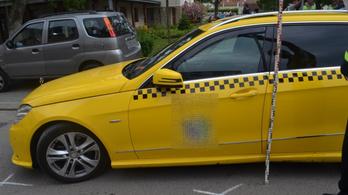 Füvet fuvarozott a taxis, ráadásul betépve